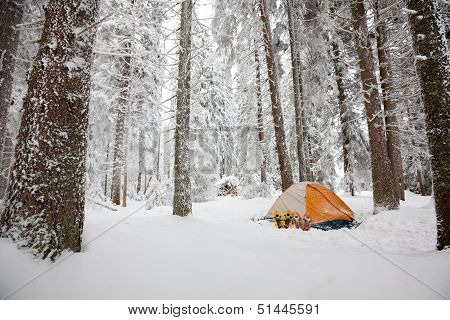 Camping During Winter Hiking In Carpathian Mountains
