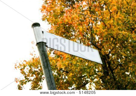 Autumn Street Sign