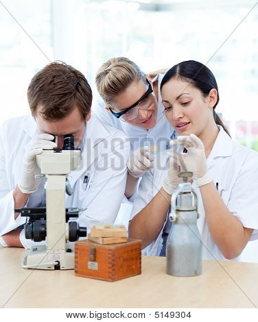 People Working In A Laboratory