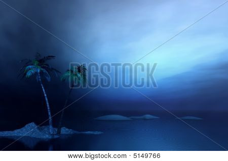 Night. Sea And Palms