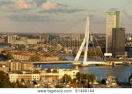 Erasmus Bridge And Central Rotterdam
