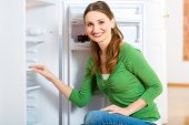 picture of housekeeper  - Young woman or housekeeper defrosts the refrigerator and wipes in clean - JPG