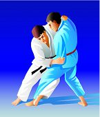 pic of judo  - Vector illustration - JPG