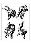 image of judo  - Vector illustration - JPG