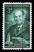 Harvey Washington Wiley, Chemist