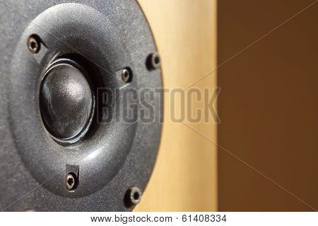 Wooden Audio Speaker, Close Up