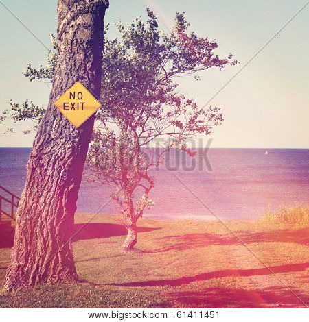 Tree with dead end sign