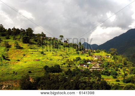 Pastoral Landscape of Nepal