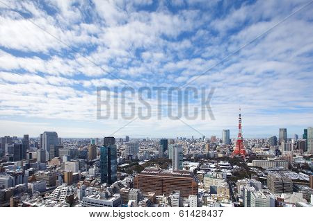 view of tokyo city and tokyo tower at nice daytime