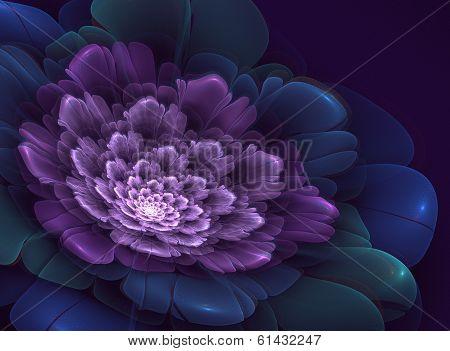 Abstraction, like a shining elegant fantasy flower