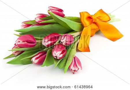 Bouquet Of Beautiful Tulips With Bow-knot. March 8, Valentine's Day, Mother's Day
