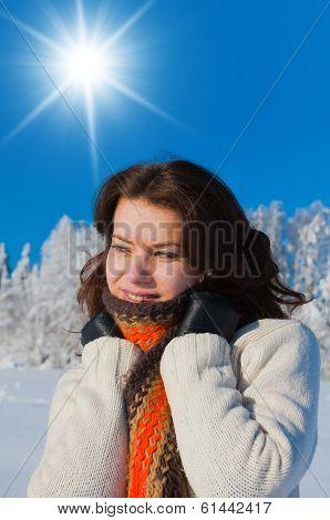 Under the Sun Midwinter Sunshine