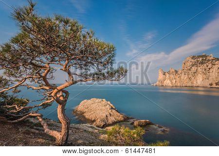 Rocky coastline of