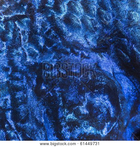 Macro of an Electric Blue Hap skin, Sciaenochromis ahli