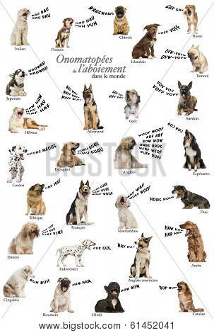 Composition of dog barking onomatopoeias from the world, French version
