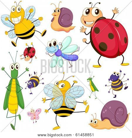 Illustration of a group of insects on a white background