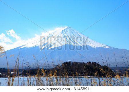 Day Light With Fujiyama