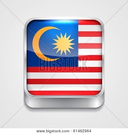 vector 3d style flag icon of Malaysia
