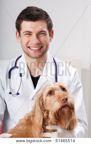 Male Vet And Pretty Dog