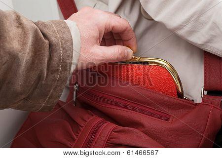 Purse Stealing Closeup