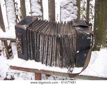 Old harmonica Bologovka