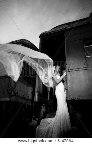 Bride in a train