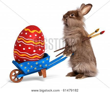 Funny Easter Bunny Rabbit With A Blue Wheelbarrow And A Red Easter Egg