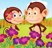 Illustration of the two monkeys at the garden in the hilltop