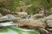 stock photo of naturel  - The clear mountain waters of the Tartagine river flow under a Genoese bridge in the Tartagine forest near Mausoleo in the Balagne region of Corsica - JPG