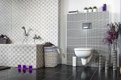 stock photo of lilas  - Modern bathroom black and white with violet additions - JPG