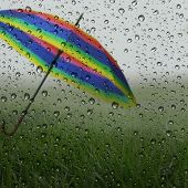 Wet glass with raindrops, green grass and colorful umbrella