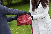 stock photo of yanks  - A thief trying to steal a bag from a woman in a park - JPG