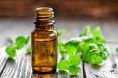 stock photo of mint-green  - Mint oil in a bottle and fresh leaves - JPG