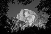 Half Dome Black and White