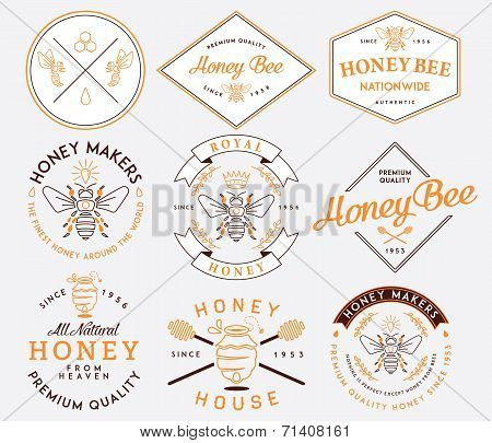 Honey And Bees Colored