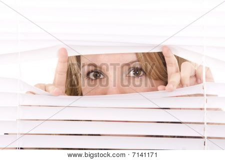 Woman Hands Apart On The Window Blinds