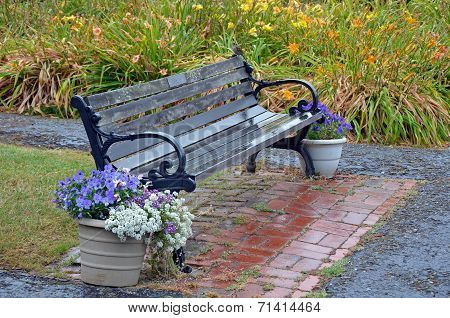 Wooden Bench In Rainy Garden