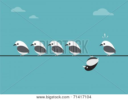 Vector image of birds group.
