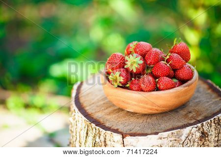 Strawberry. Strawberries. Organic Berries