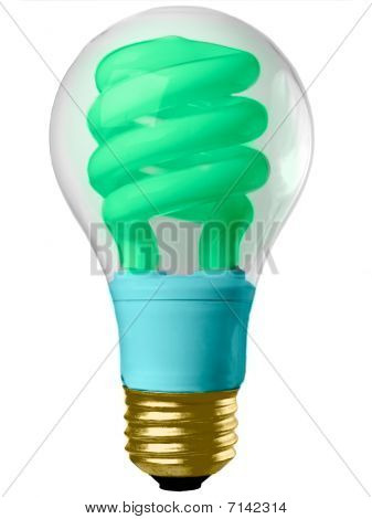 Ecology Conceptual Light Bulb