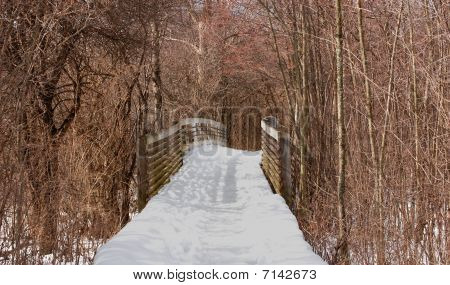 Bridge In Park In The Snow, Winter Scene