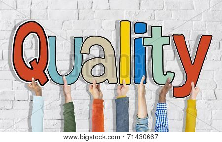 Multiethnic Group of Hands Holding Word Quality