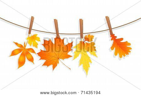 autumn leaves with clothespin vector