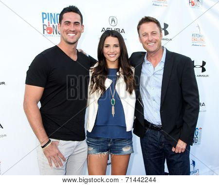 LOS ANGELES - SEP 4:  Josh Murray, Andi Dorfman, Chris Harrison at the Ping Pong 4 Purpose Charity Event at Dodger Stadium on September 4, 2014 in Los Angeles, CA