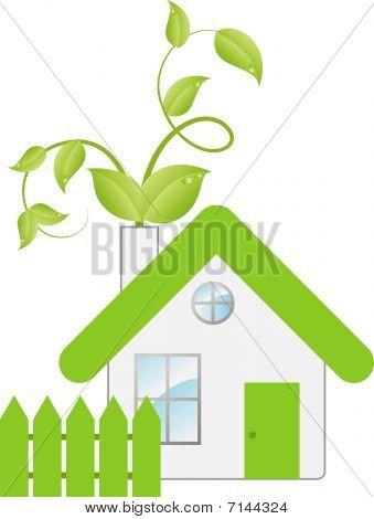 Eco house consept