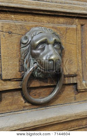 Lion head on wooden door