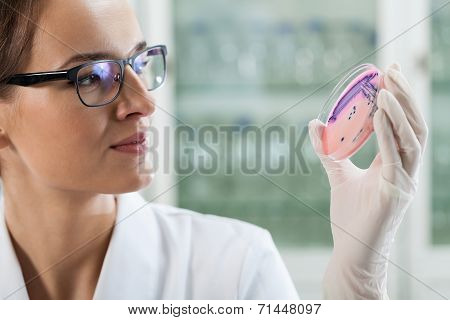 Woman Experimenting With Microbacteria