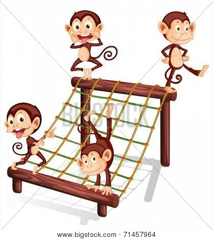 Illustration of the four playful monkeys on a white background