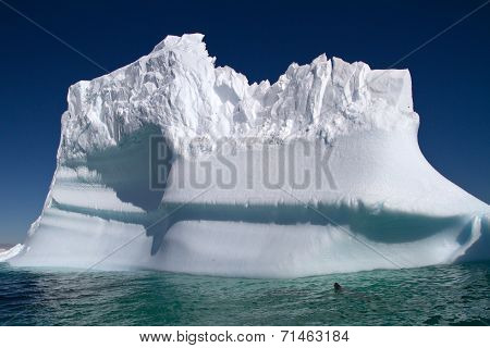 Large Iceberg In The Blue Waters Of The Antarctic