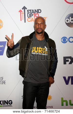 LOS ANGELES - SEP 5:  Common at the Stand Up 2 Cancer Telecast Arrivals at Dolby Theater on September 5, 2014 in Los Angeles, CA